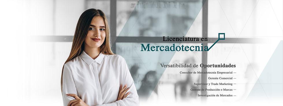 mercadotecnia web.jpg