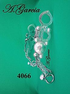 BIT 4066.JPG
