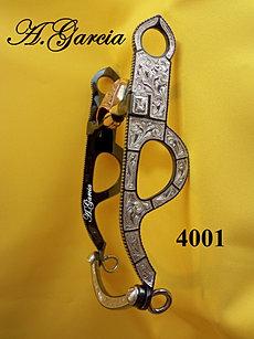 BIT 4001.JPG