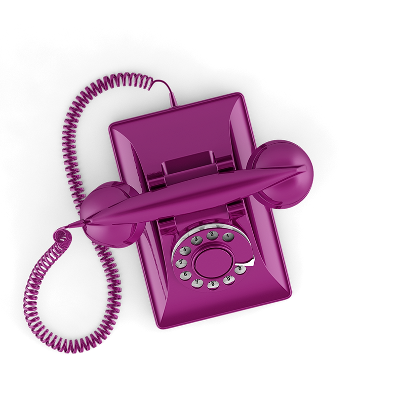 Emploi h tesse de t l phone rose domicile for Rose a domicile