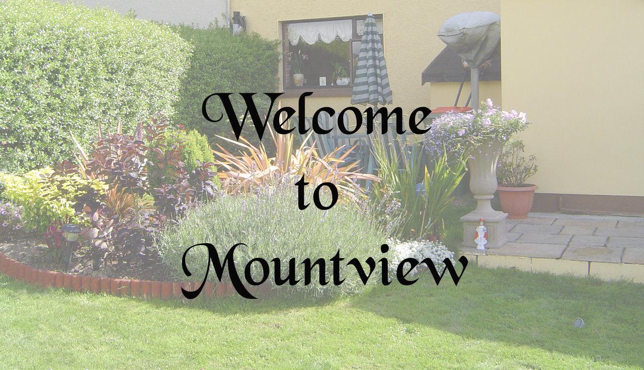 Mount View Bed And Breakfast Cobh Ireland
