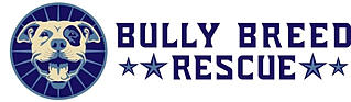 Bully Breed Rescue Inc.
