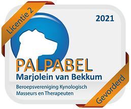 Logo palpabel2021.png
