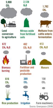 Kødproduktion forurening