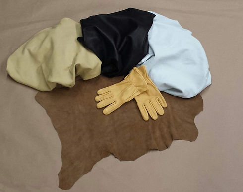GLOVES FOR SITE 2 TO USE fixed.jpg