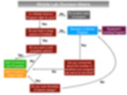 Flow Diagram for Website.jpeg.001.jpeg