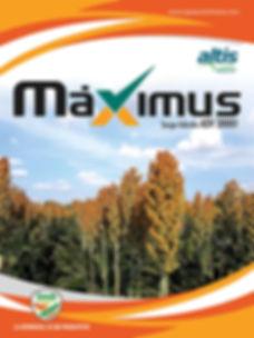 maximus1.jpg