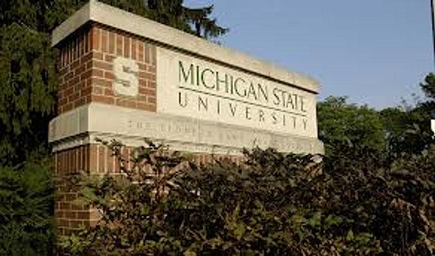 MichiganStateUniversity.jpeg
