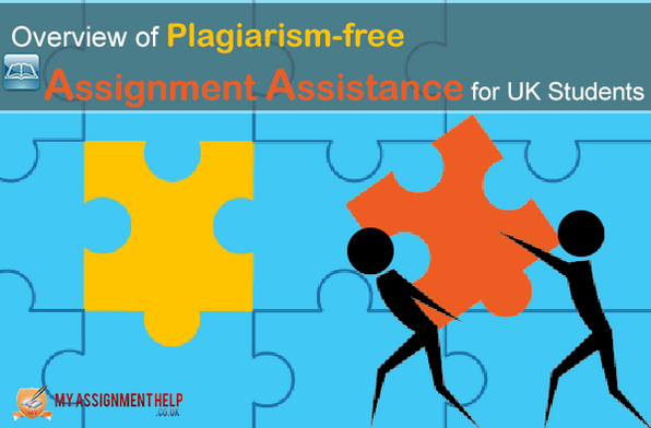 Plagiarism assignment