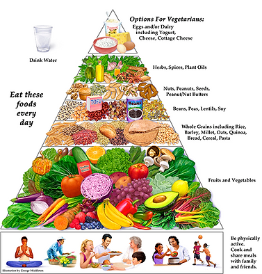 Good Nutrition Is Essential For Everyone But Its Especially Important Growing Teenagers The Teenage Body Demands More Calories During Early