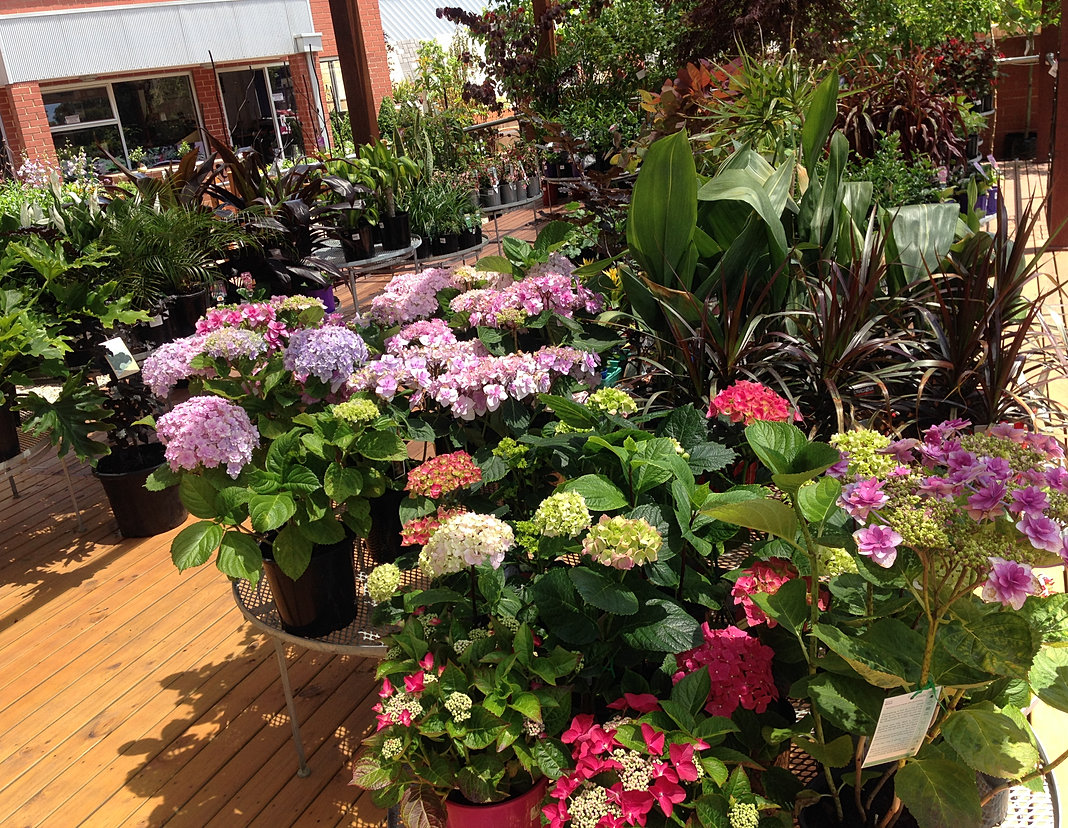 The garden depot landscape professionals for Landscape design adelaide hills