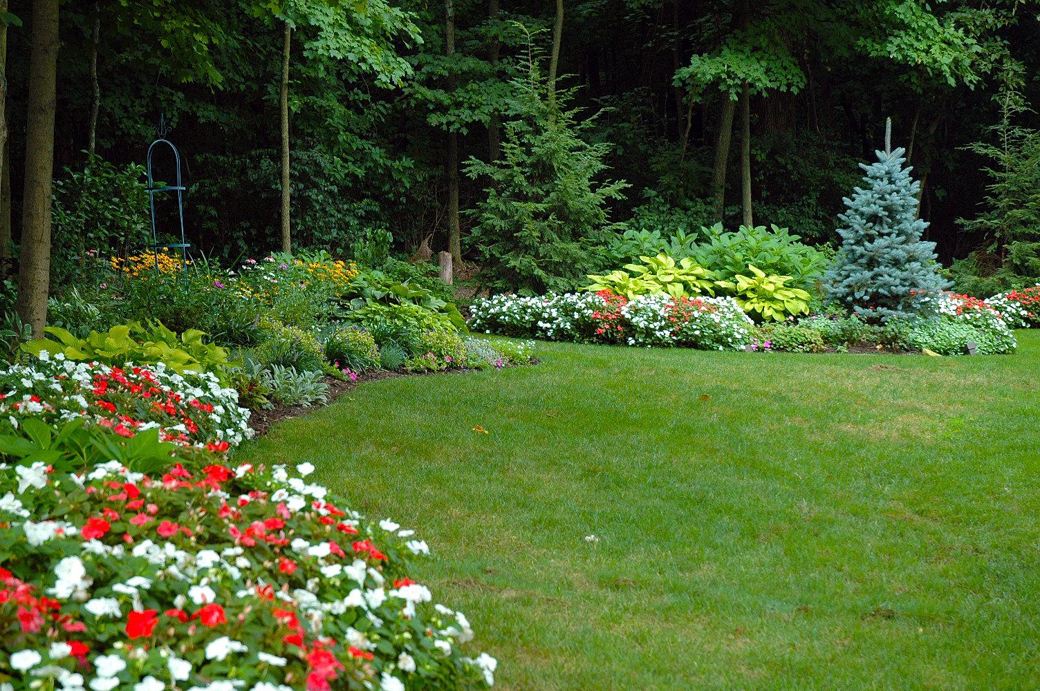 Lamond design woodland edge garden for Woodland garden design