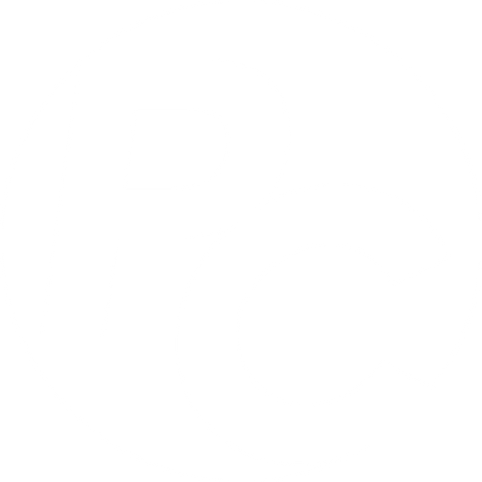 PC Icon W.png