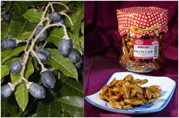 Pili fruits and Processed nuts