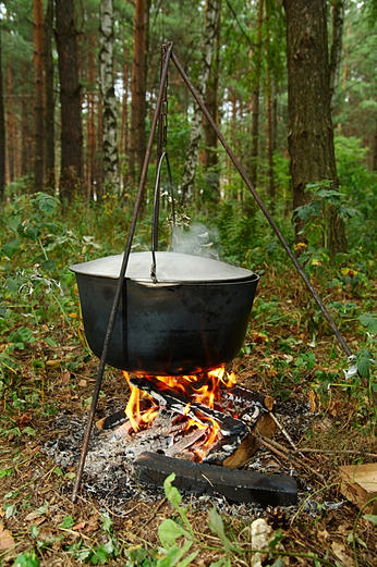 Bushcraft gathering