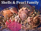 Shells And Pearl Family