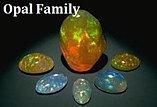 Opal Family