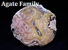 Agate Family