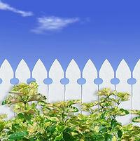 White Picket Fence