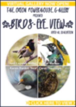BirdsEyeView-AkaroaMail-Ad-Virtual-Open-