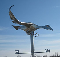 Blue Goose Weather Vane