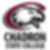 chadron-advisers-study-usa.png