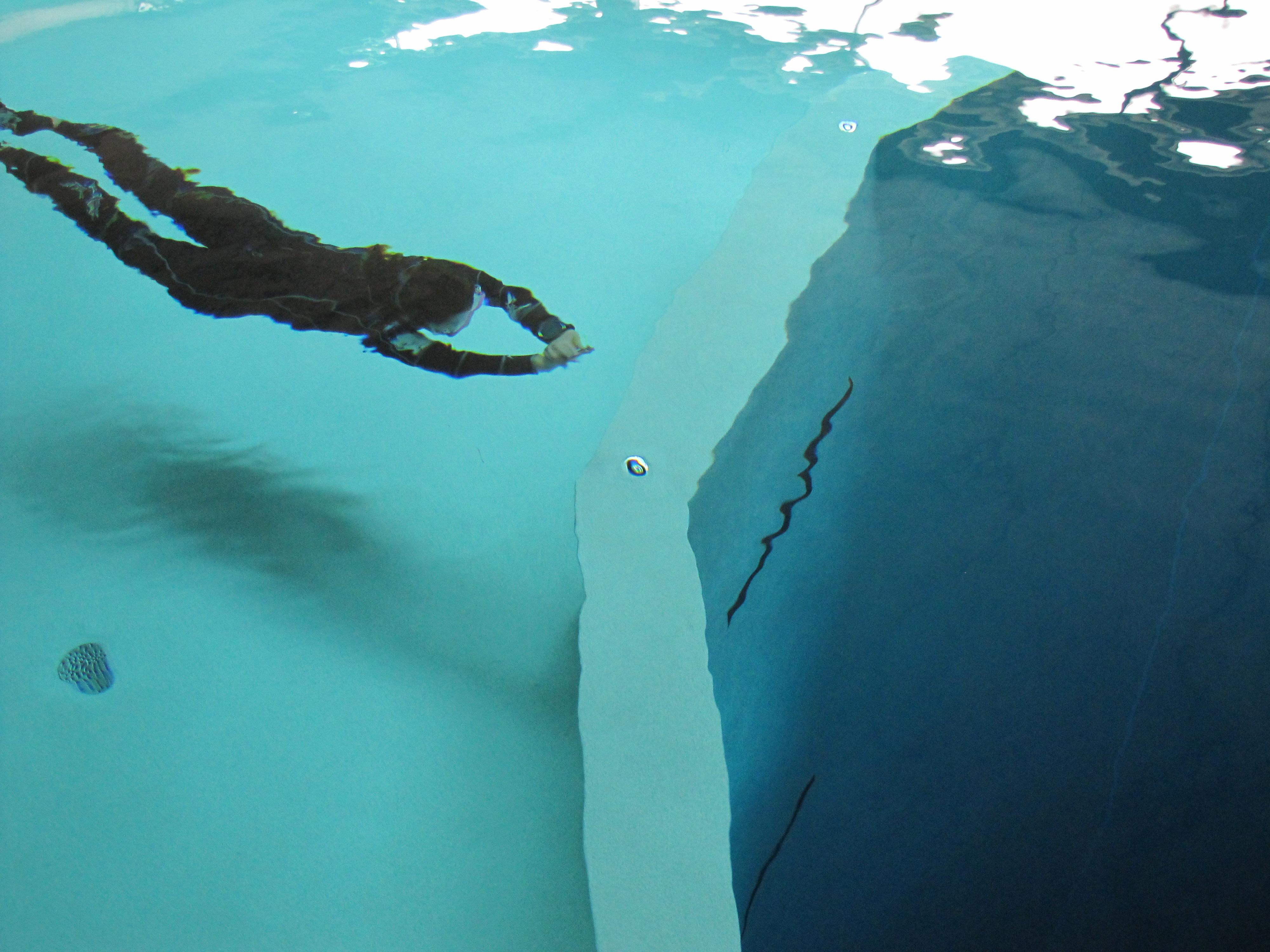 Apn e libre 77 apn e dynamique la piscine for Ask yourself why la piscine