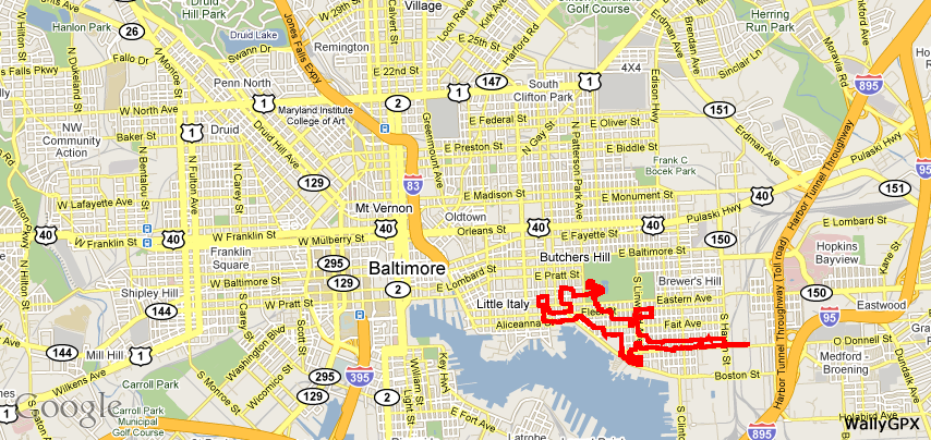 """Gecko Stuck to Baltimore '10"""