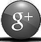 google plus Fincas Torrecilla Agencia Inmobiliaria en Miranda de Ebro