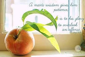 Wisdom: Slow to Anger