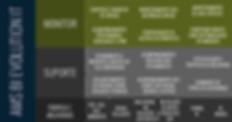 AMS BI Evolution IT Services | Monitor | Suporte | Fâbrica e Melhorias
