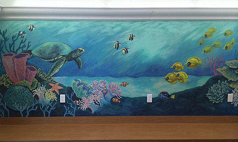 Tropical coral reef mural for Coral reef mural