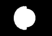 procedural_logo_white_A4.png