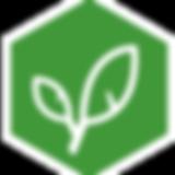 IA-Logo-Natural.png