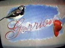 18. gorrion (marisol aguirre - christian meier).jpg