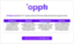 Oppti - Visual.PNG