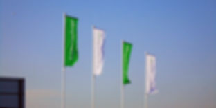 Flags on poles