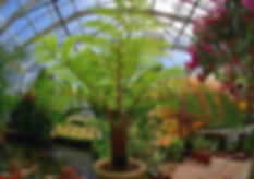 Around the Nursery 2018-04-22_11-33-22 .