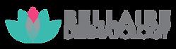 BDA_Logo_horizontal_color.png