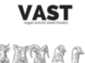 VAST (1).png