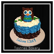 Welcome Your Baby Boy w/ an Owl Cake