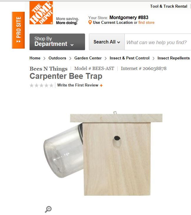 We Are On Carpenter Bee Traps