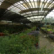金谷農場庭園的720環景圖