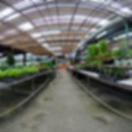 金谷農場-庭園的720環景圖