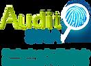 logo-audit-full.png