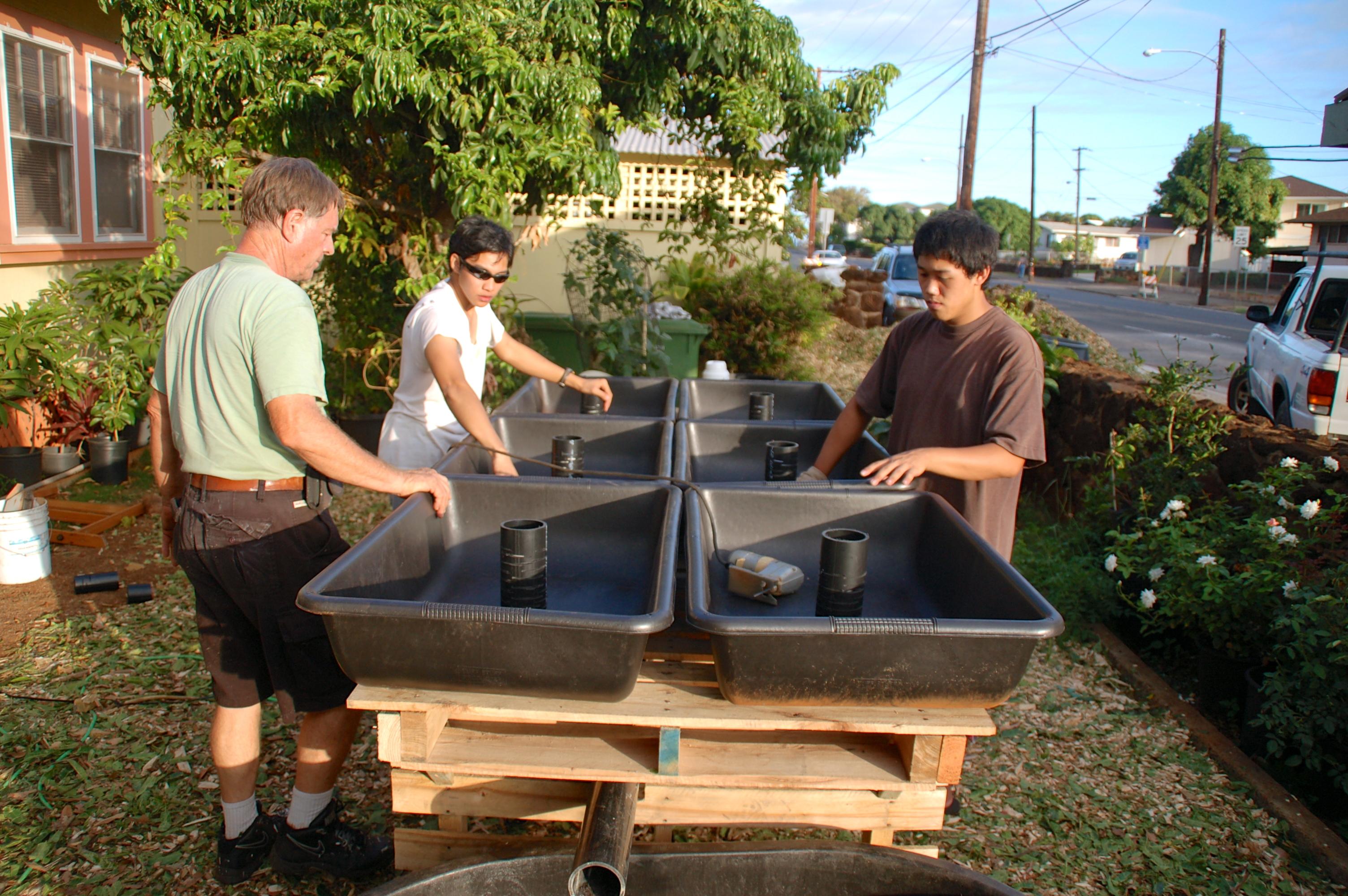 Aquaponics Oahu
