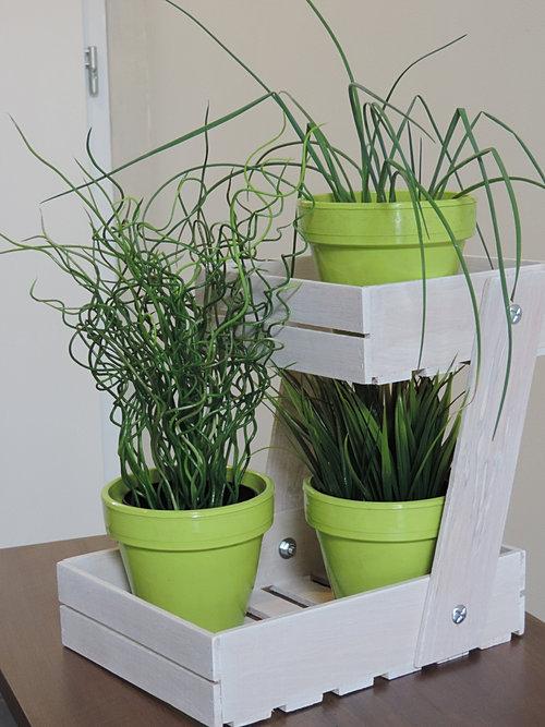Portes plantes aromatiques de cuisine - Plantes aromatiques cuisine ...