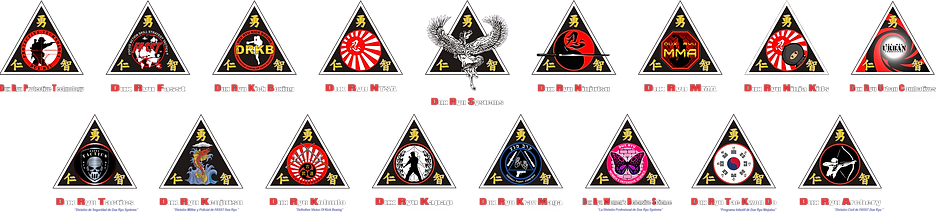 Dux Ryu Systems logos.png