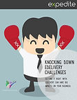 eDelivery-Challenges-Thumb.jpg