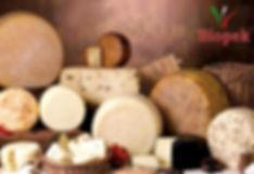 biopek, primosale, ricotta, canestrato, normanno, nero di sicilia, primosale alle olive, formaggi siciliani, formaggi tipici siciliani